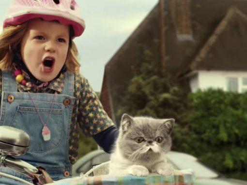 Three – #SingItKitty – cat advert image